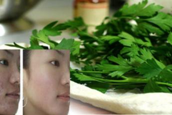 Вот это да! Используй листья этого растения в борьбе против морщин, прыщей, темных пятен и аллергии на солнце.